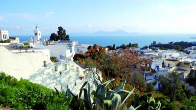 Тунис  – едно живо минало, жасминови храсти и много слънце