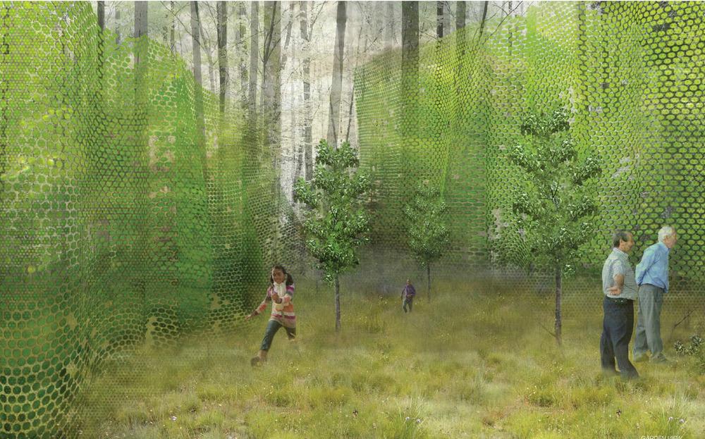 Обявиха дизайнерите за 16-то издание на Международния фестивал на градините [4/5]