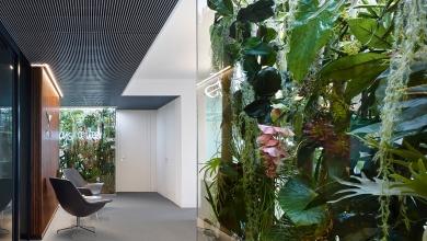 Зелен офис