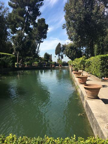 Водната площ  в градината