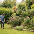 Перфектна градина с акумулаторните уреди на STIHL