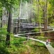 Новият парк на Истанбул - зелен оазис в развитие